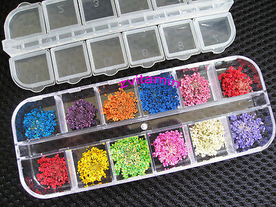 12 Colors Dried Flower for Acrylic UV Gel Nail Art Tips Design Case DIY Decor