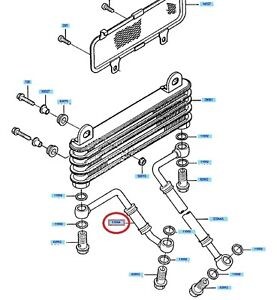 Kawasaki-oil-cooler-pipe-GPZ900R