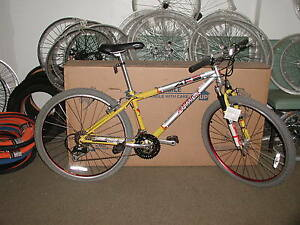 12-in-Barracuda-A2FS-Mountain-Bicycle-Rock-Shox-Indy-SL-Fork-12-034-MTB