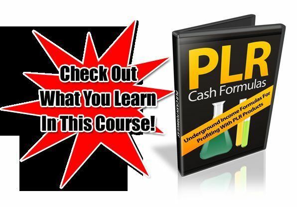 Income Formulas For Profiting With PLR Products Video Course on CD