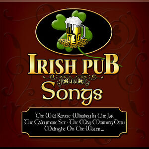 CD-Pub-Irlandais-Songs-d-039-Artistes-divers-CD-Traditional-Celtic-Irish-Musique