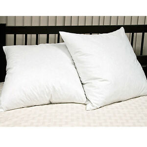 Continental-Euro-Square-Pillows-Pair-65cm-x65cm-26-034-x26-034-Luxury-Hotel-Quality