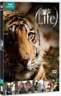 Inside Life (DVD, 2010)