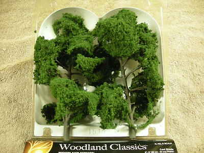 "3521 8""-9"" Cool Shade Trees New In Box"