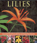 Lilies: An Illustrated Guide to Varieties, Cultivation and Care, with Step-by-step Instructions and Over 150 Stunning Photographs by Andrew Mikolajski (Paperback, 2013)