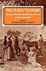 The Slave's Economy: Independent Production by Slaves in the Americas by Philip D. Morgan, Ira Berlin (Paperback, 1995)