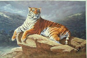Ray-Reibel-034-Dawn-039-s-Early-light-034-Tiger-S-N-Limited-Edition-Print