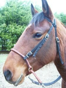 HORSE-BITLESS-BRIDLE-LEATHER-HACKAMORE-BOSAL-COLOR-TAN-NICE