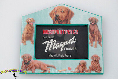Chocolate Lab Dog Magnet Photo Picture Frame