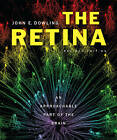 The Retina: An Approachable Part of the Brain by John E. Dowling (Hardback, 2011)