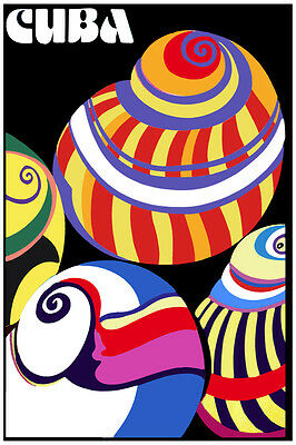 2358.Colorful Cuba Polymitas shell POSTER.Room Home Interior design wall art