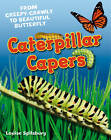 Caterpillar Capers: Age 5-6, Above Average Readers by Louise Spilsbury (Paperback, 2011)