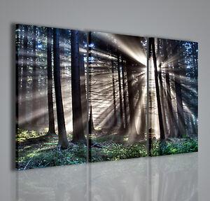 Quadri moderni sunlight quadro moderno natura arredamento for Ebay arredamento casa