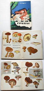 B-V-Andrest-GRIBY-MUSHROOMS-Russia-1968