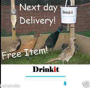 Chicken-poultry-spring-pheasant-hanging-bucket-feeder