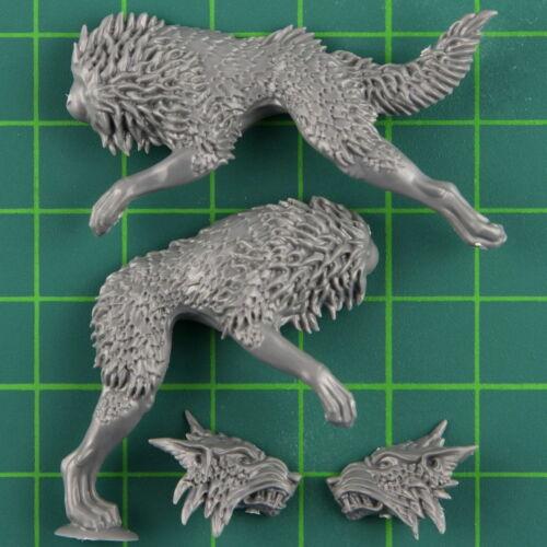 Space Wolves Marines Fenriswolfrudel Fenriswolf E Warhammer 40K Bitz 3644