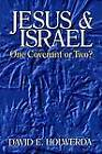 Jesus and Israel: Onve Covenant or Two? by David E. Holwerda (Paperback, 1997)