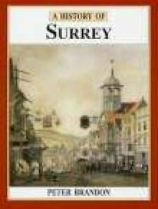 A-History-of-Surrey-Darwen-County-History-Brandon-Peter-Used-Good-Book
