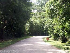 Sam-Houston-Lake-Estates-Lot-For-Sale-Texas-Close-To-Trinity-River-Utilities