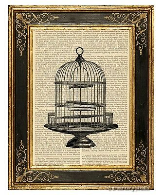 Round Birdcage Art Print on Antique Book Page Vintage Illustration Pet Birds