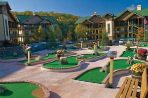 Wyndham-Smoky-Mountains-Resort-Tennessee-2BR-Deluxe-August-6-10-Dollywood