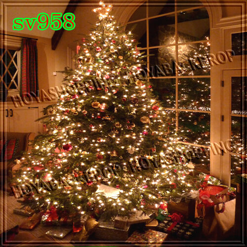 xmas 10x10 FT CP (COMPUTER PRINTED) PHOTO SCENIC BACKGROUND BACKDROP sv958