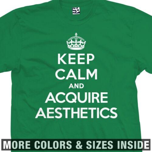 Disregard Females Males Women Men Keep Calm and Acquire Aesthetics T-Shirt