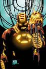 Iron Man by Joe Quesada, Frank Tieri (Paperback, 2013)
