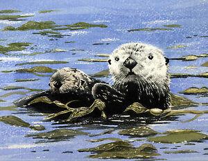 SEA-OTTERS-Watercolor-WILDLIFE-8-x-10-ART-Print-signed-by-Artist-DJR