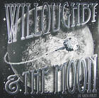 Willoughby & the Moon by Greg Foley (Hardback, 2010)