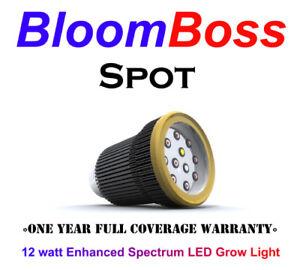 BloomBoss-Spot-12w-LED-Grow-Light-R-B-W-Hydroponics