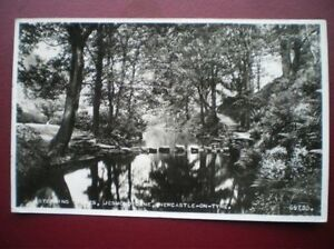 POSTCARD-RP-NORTHUMBERLAND-NEWCASTLE-JESMOND-DENE-STEPPING-STONE