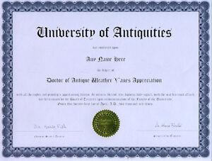 Doctor Antique Weather Vane Appreciation Diploma