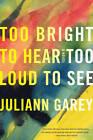 Too Bright to Hear Too Loud to See: A Novel by Juliann Garey (Hardback, 2013)