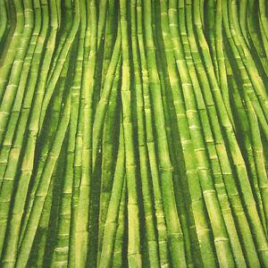 stoff meterware baumwolle pflegeleicht bambus gr n wald fotodruck neu ebay. Black Bedroom Furniture Sets. Home Design Ideas