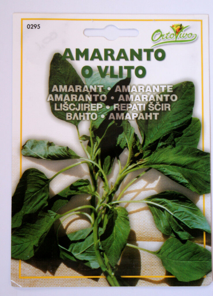 Green Vegetables seeds Best Quality From Europe 26 vareties to choose from