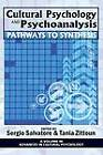 Cultural Psychology and Psychoanalysis: Pathways to Synthesis by Information Age Publishing (Paperback, 2011)