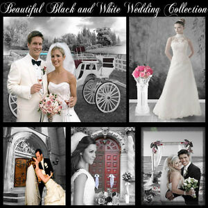 Digital-Backgrounds-Photography-Backdrops-Green-Screen-BLACK-AND-WHITE-WEDDING