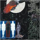 Jo Baer: Boundaries by Julia Friedrich, Lucy R. Lippard, Philipp Kaiser (Hardback, 2013)