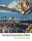 The Social Organization of Work by Professor of Sociology and Law Teresa A Sullivan, Professor of Sociology Randy Hodson (Paperback / softback, 2011)