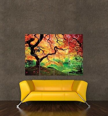 BEAUTIFUL COLOURFUL TREE SCENERY LANDSCAPE GIANT PICTURE POSTER ART PRINT KB467