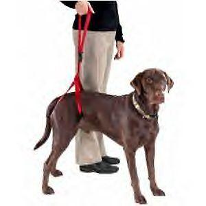 Bottoms Up Leash senior dog Harness disabled pet arthritis dysplastic lift NEW