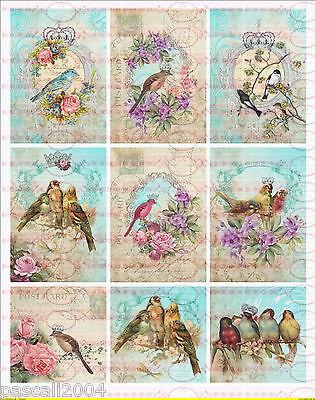 Shabby Vintage 9 Bügelbilder  Bird Vogel Nostalgie Antik  NO. 568
