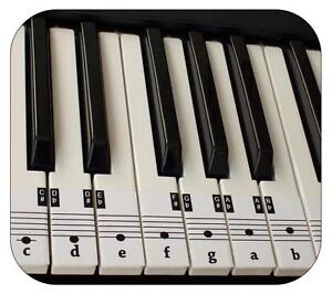 Beginners-Piano-amp-Keyboard-Music-Note-Stickers