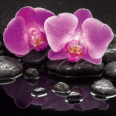GLASBILD WANDBILD DECO GLASS FLOAT GLAS ORCHIDEE FENG SHUI ZEN STEIN WELLNESS