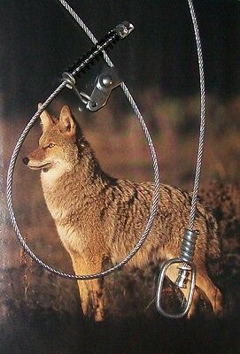 """SNARE Coyote Bobcat Fox   Canadian Pro 3/32"""" (7x7) with Swivel & 50# Kill Spring"""