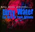 Various Artists - Dirty Water (The Birth of Punk Attitude, 2010)