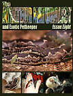 The Amateur Naturalist (and Exotic Petkeeper) #8 by CFZ Press (Paperback, 2010)