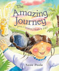 The Amazing Journey: Jesus, Creation, Death and Life! by Susie Poole (Paperback, 2007)
