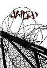 Jailed by Myra Sherman (Paperback / softback, 2011)